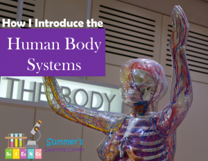 How I Introduce Body Systems